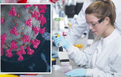 Antibodies only one piece of the puzzle when it comes to Covid immunity, says study