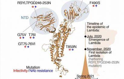Scientists suspect Lambda SARS-CoV-2 variant most dangerous