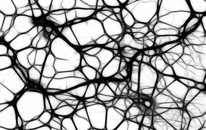 Neurons in visual cortex of the brain 'drift' over time