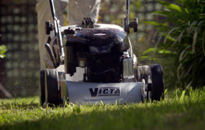 What your lawn needs now is love and attention