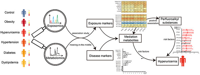 Risk of chronic diseases caused by exogenous chemical residues