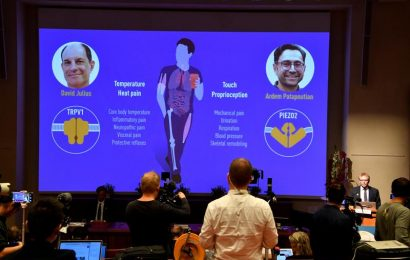 Two Americans win Medicine Nobel Prize for sensory findings